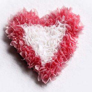 valentines - heart tissue