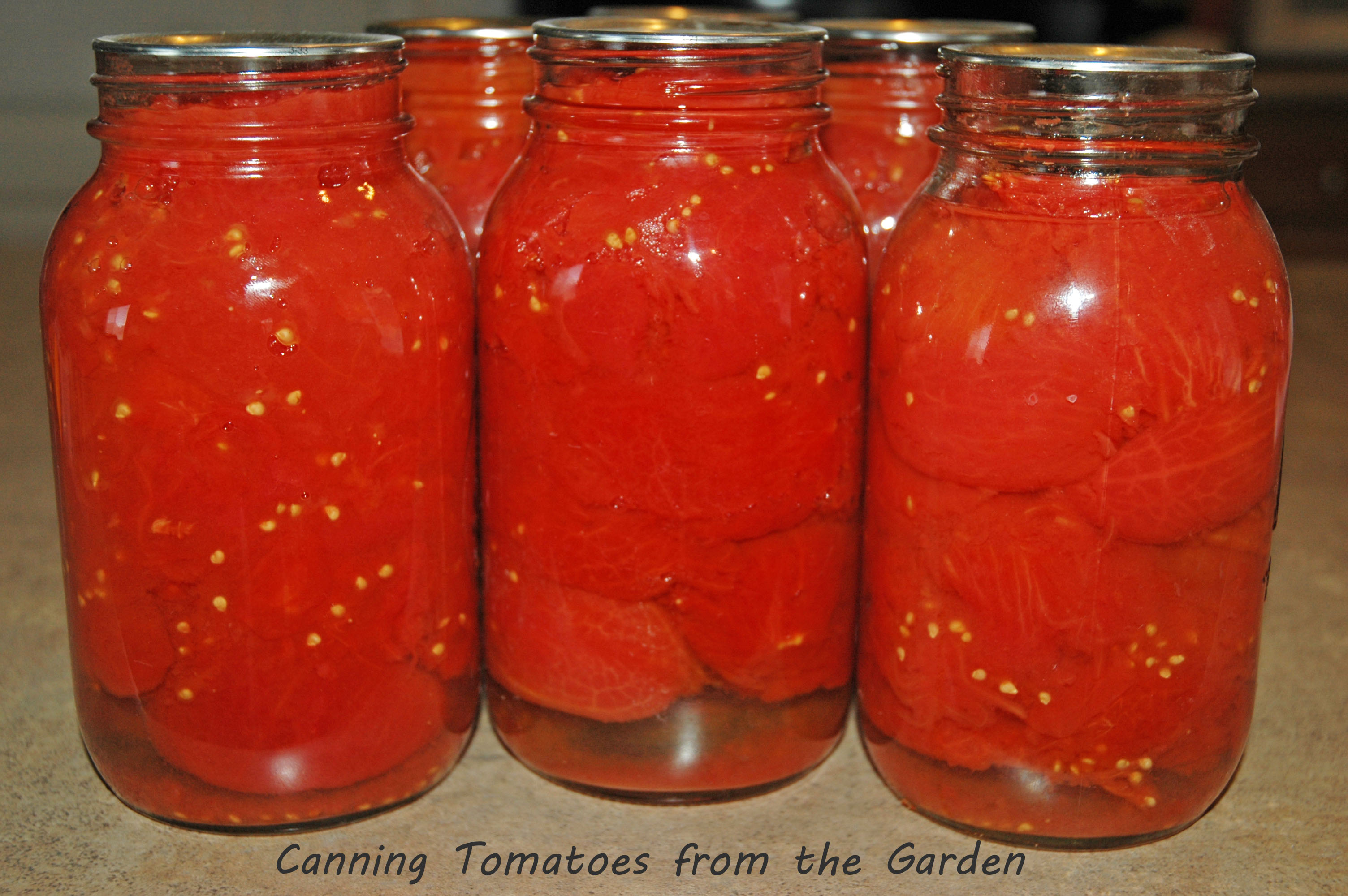 Canning Tomatoes From The Garden Saving Cent By Cent