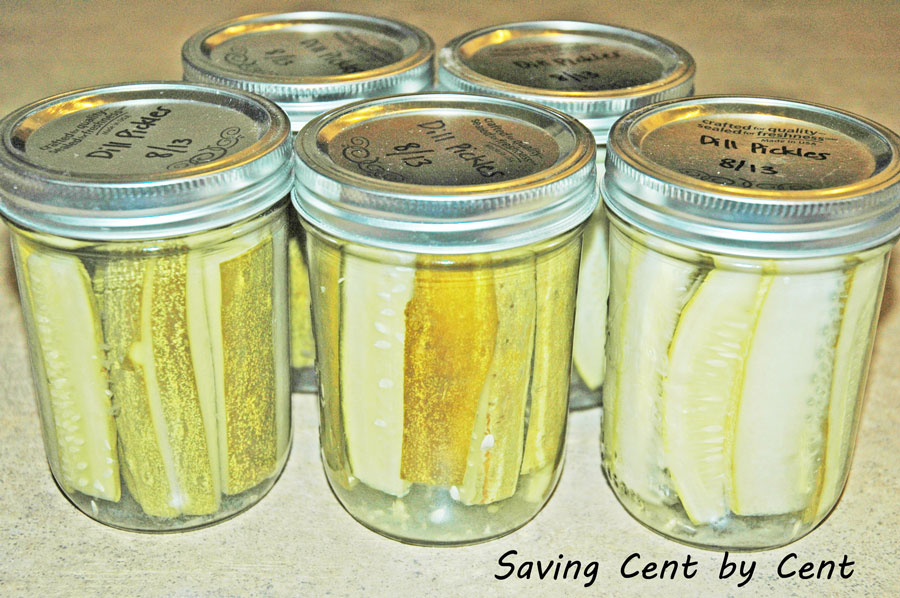 preserving and canning dill pickles cucumbers from the garden