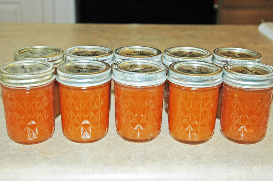 Canning and preserving jam how to make jam