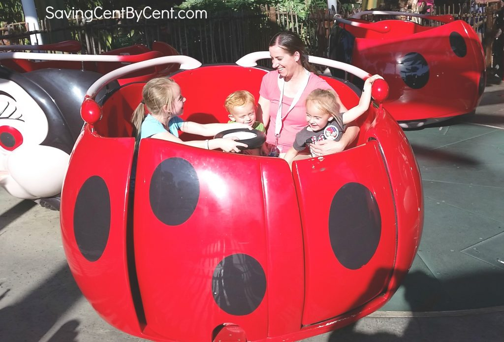 disney-california-adventure-ladybug-ride