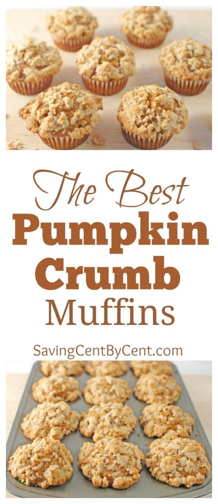 Moist Pumpkin Crumb Muffins