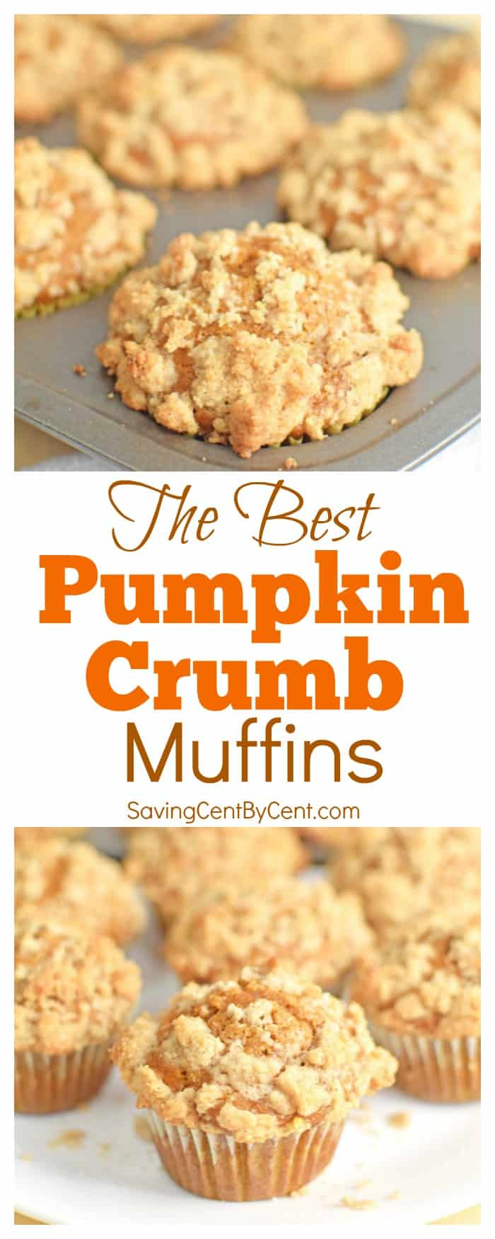 The Best Pumpkin Crumb Muffins
