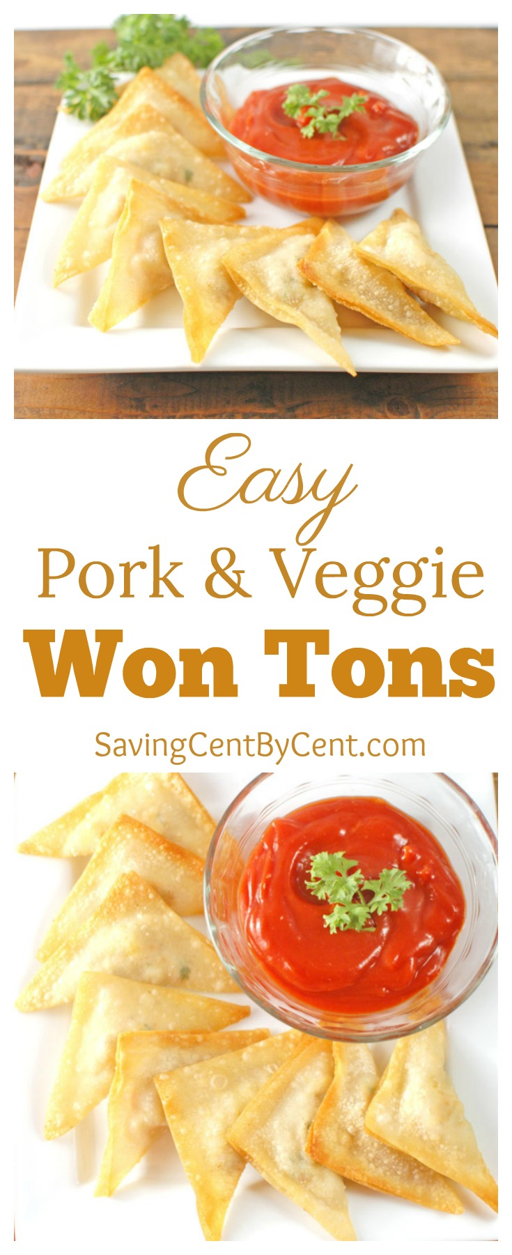 Easy Pork and Veggie Won Tons