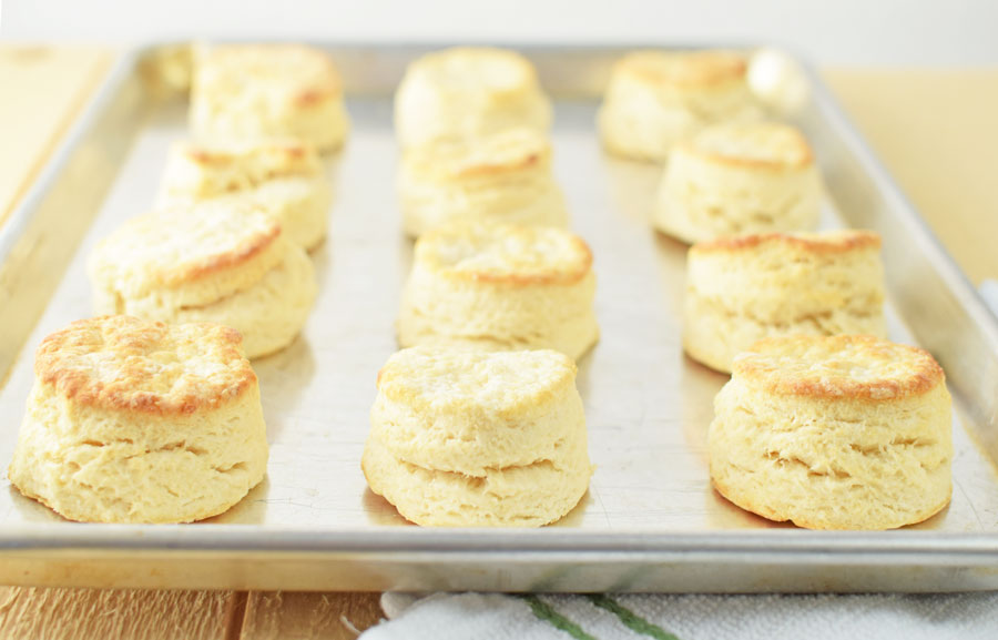 Simple homemade biscuits
