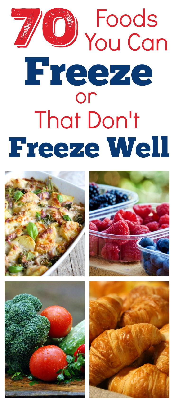 70 foods you can freeze or that don't freeze well