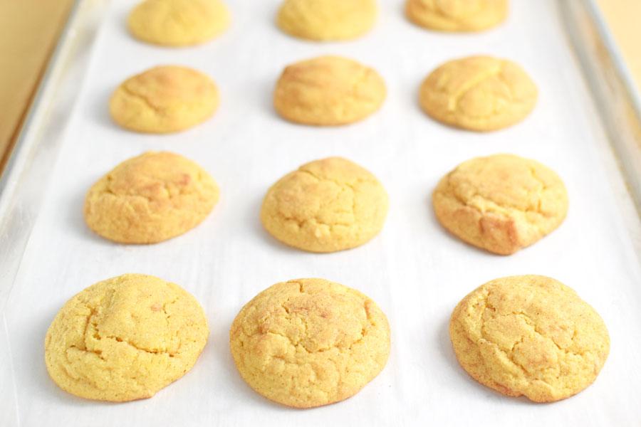 Pumpkin cookies recipe with canned pumpkin